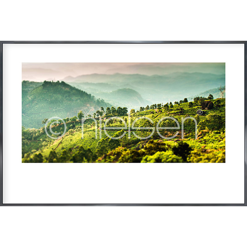 "Gerahmtes Bild ""Landscape of Tea Plantations"" mit Alurahmen Alpha"